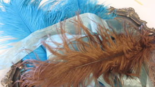 or brown and turquouise feathers