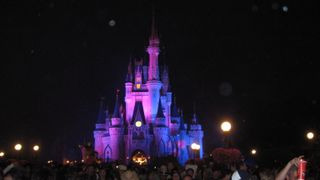 Cinderella's Castle, just as the fireworks are beginning. Beautiful!