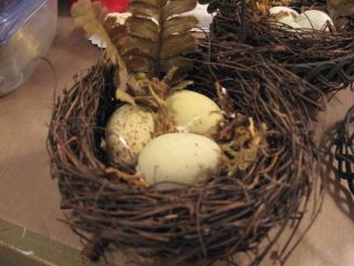 After nest, prettier eggs, natural moss and even a few fern fronds.