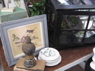 Other bird related goods. And I love that little glass hothouse!