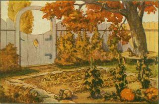 Pretty Fall Scene