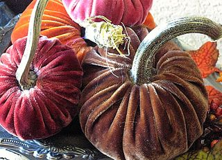 Velvet pumpkins for Fall! Are these not delish?