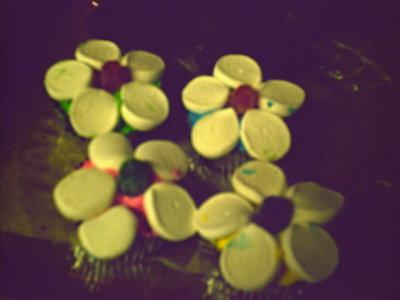 Sheris_cupcakes