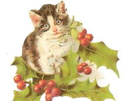 Christmacat